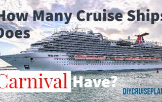 How many cruise ships does Carnival have?
